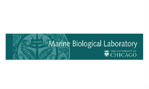 University of Chicago Marine Biological Laboratory Logo